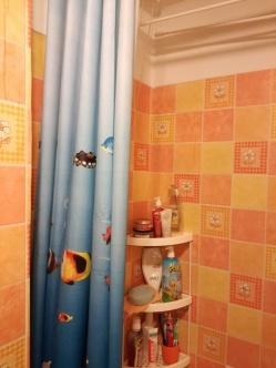 łazienka przed remontem